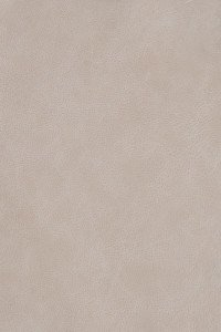 Leather Craft _ GR250 Etana Beige