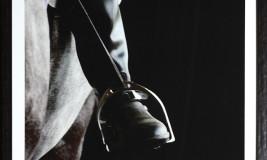 equestrian grey scale